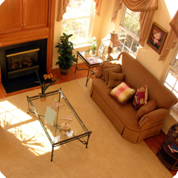 carpet-upholstery-cleaning-image